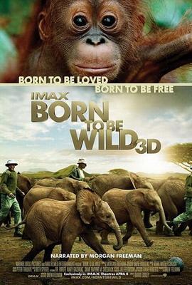 «Рождённые на воле» IMAX 3D