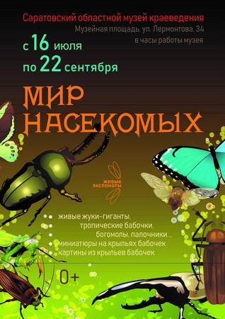 «Мир насекомых»